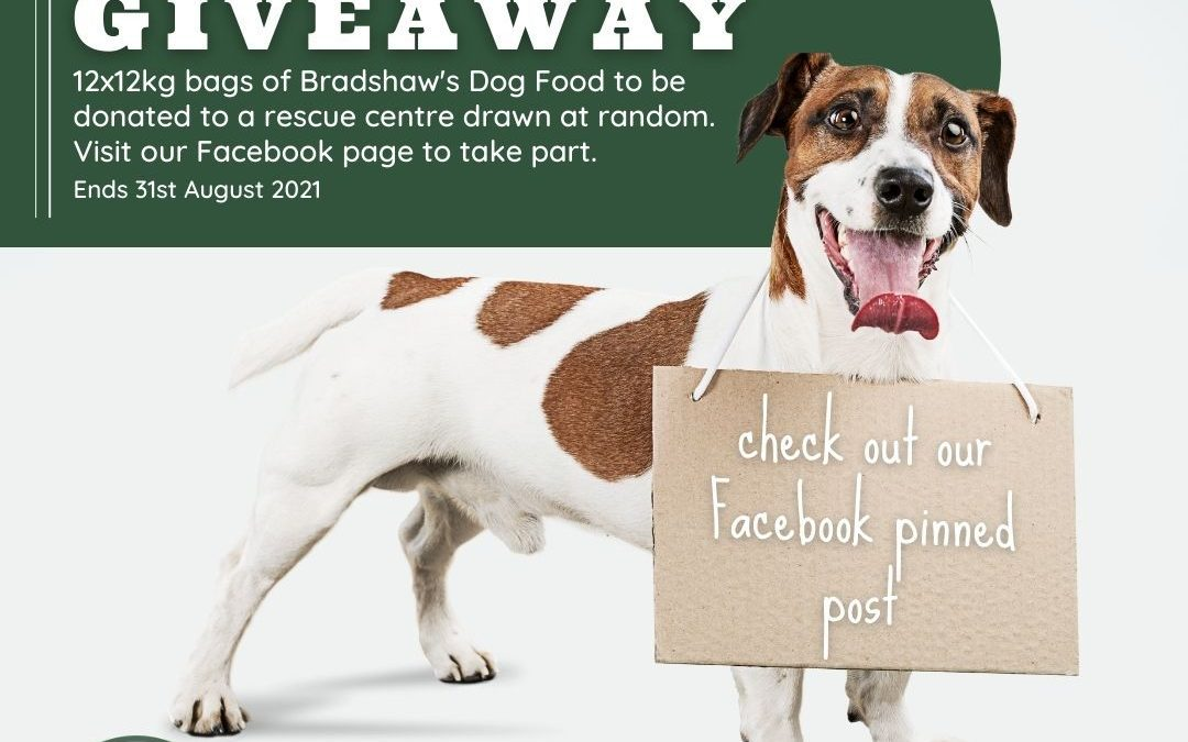 National Dog Month – Giveaway